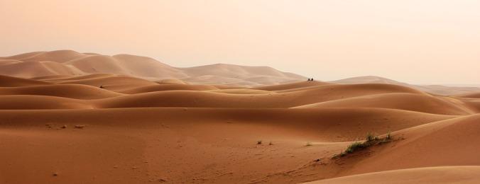 desert-2435404_960_720